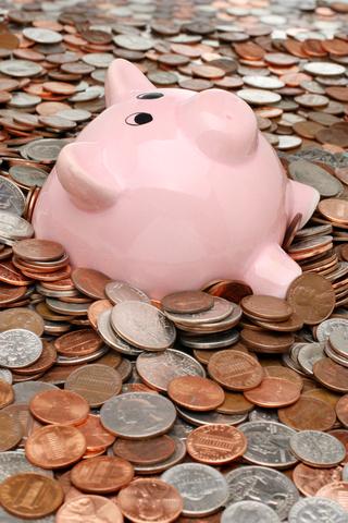 Piggy Bank | HiroBoga.com