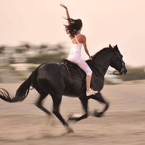 Create! Hiro Boga (horsewoman)
