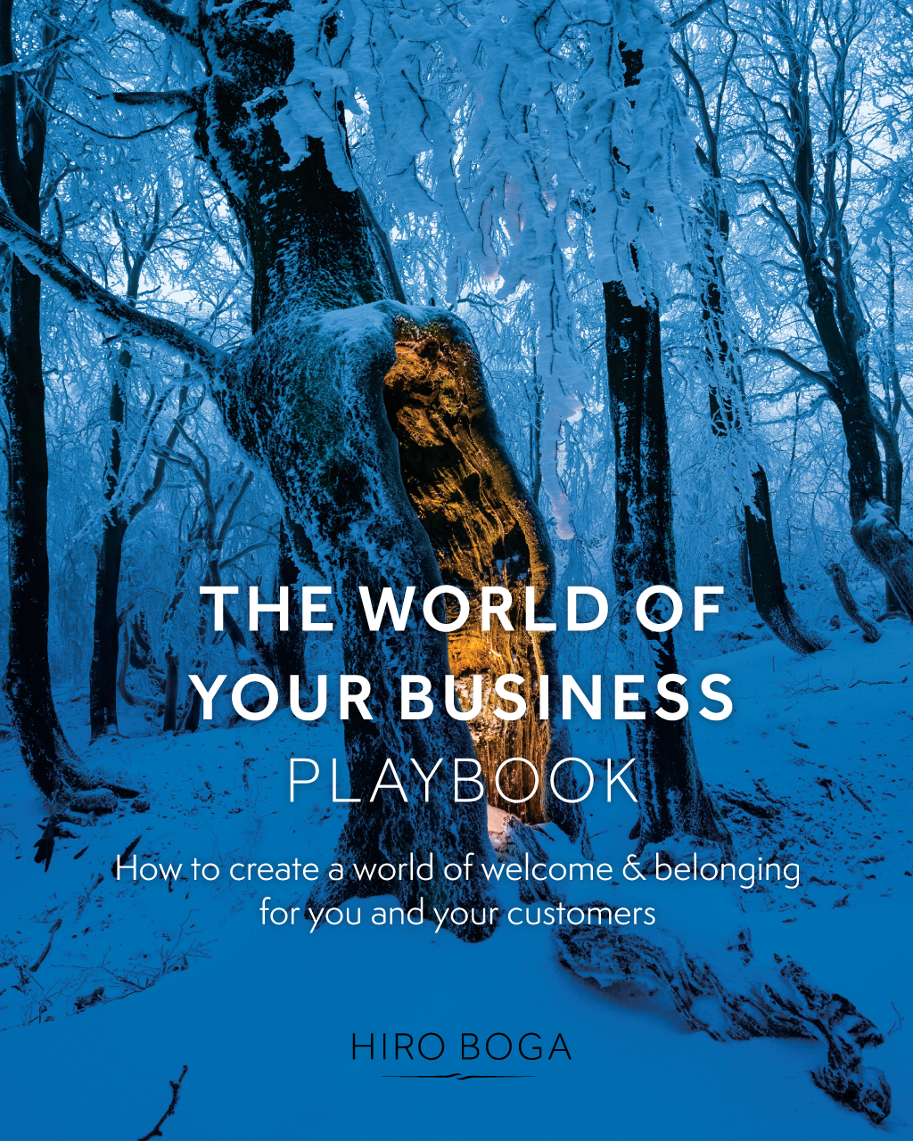 World of Your Business Playbook