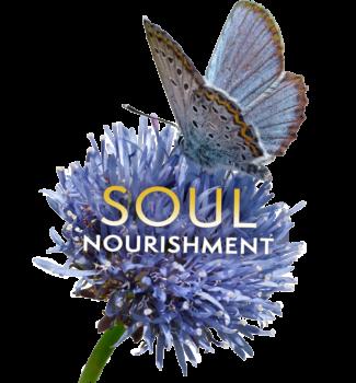 Hiro Boga Soul Nourishment