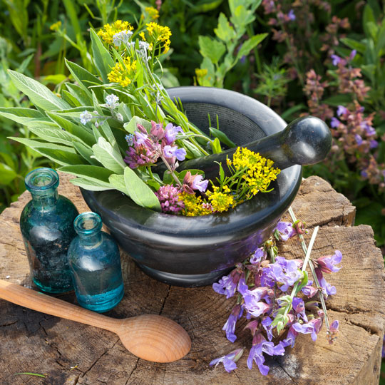mortar, pestle and herbs